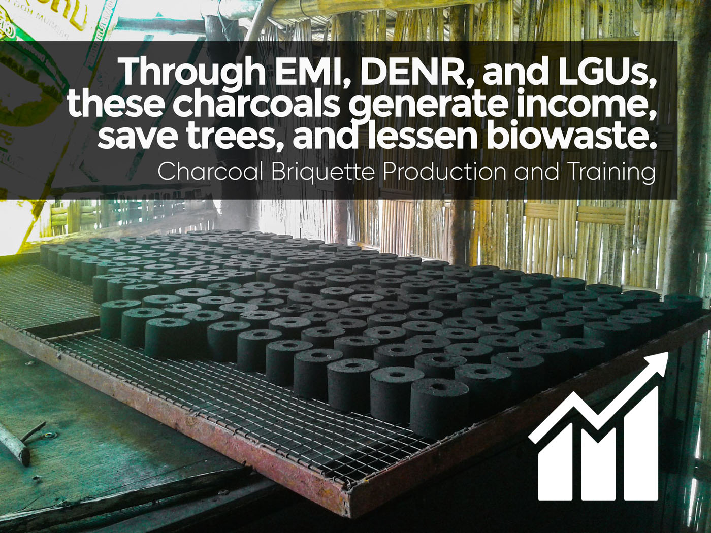 Charcoal Briquetting - decent work and economic growth -final