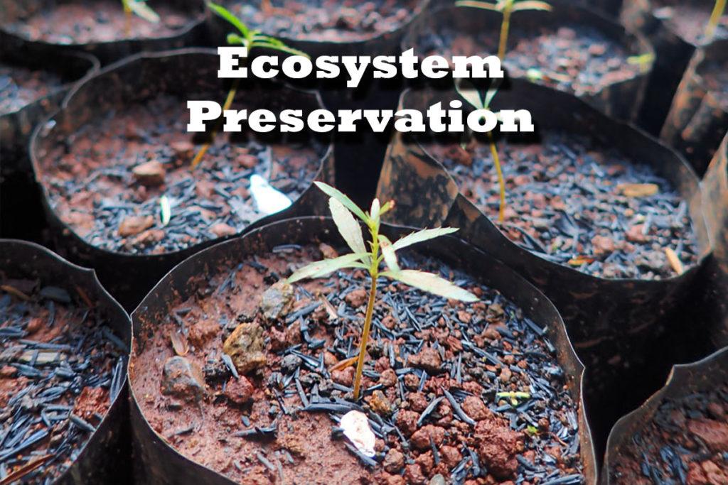 Ecosystem Preservation - Eramen Minerals Inc